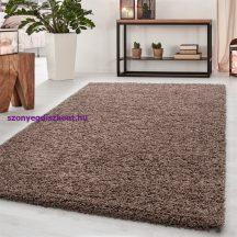 Ay dream 4000 mokka 160x230cm egyszínű shaggy szőnyeg
