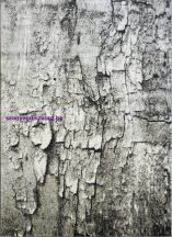 Ber Maksim 8606 bézs-szürke 80x150cm szőnyeg
