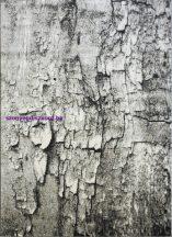 Ber Maksim 8606 bézs-szürke 60x100cm szőnyeg