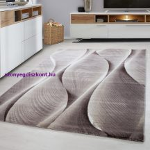 Ay parma 9310 barna 160x230cm modern szőnyeg akciò