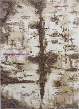 Ber Zara 6813 bézs 120x180cm Szőnyeg