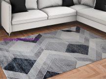 Modern szőnyeg, Franc 6601 szürke 80x150cm szőnyeg