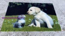 Kd Digital kutyus 40x60cm lábtörlő